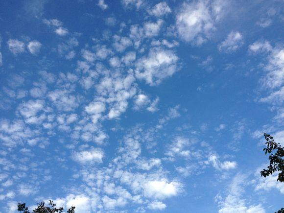 今日はなんか外が綺麗です