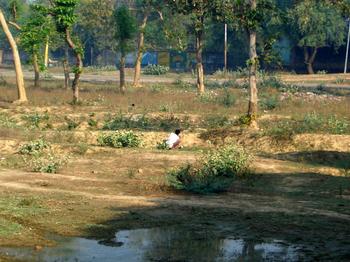 India2006041316