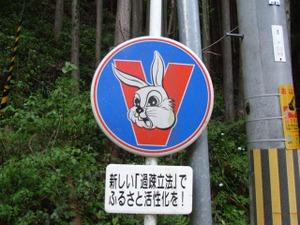 Kiguruiusagi2006060101