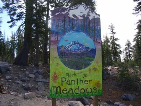Panthermeadows2007070701