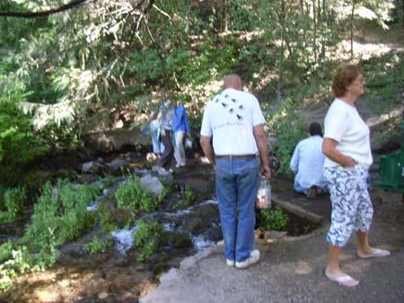 Sacramentoriverheadwaters2007071105