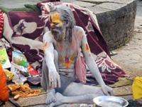 Sadhu2007121021