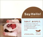 Sayhello2005010601