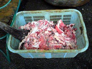 Tsukiji2006110206